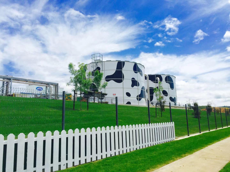 蒙牛乳业监测项目
